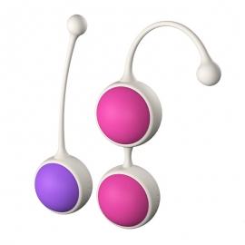 荷兰COB-Dora缩阴锻炼球(硅胶)